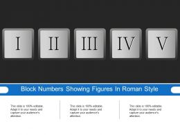 Block Numbers Showing Figures In Roman Style