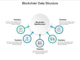Blockchain Data Structure Ppt Powerpoint Presentation Infographics Cpb