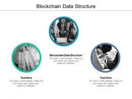 Blockchain Data Structure Ppt Powerpoint Presentation Model Cpb