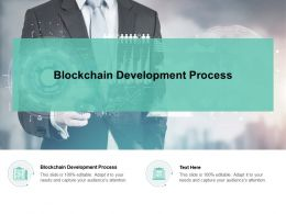 Blockchain Development Process Ppt Powerpoint Presentation Inspiration Format Cpb