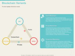 Blockchain Variants Square Ppt Powerpoint Presentation Icon Images