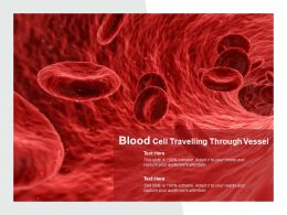 Blood Cell Travelling Through Vessel