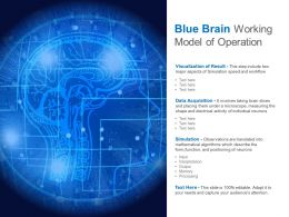 Blue Brain Working Model Of Operation