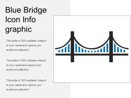 Blue Bridge Icon Info Graphic