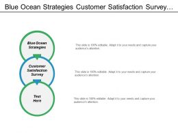 Blue Ocean Strategies Customer Satisfaction Survey Financial Management Cpb
