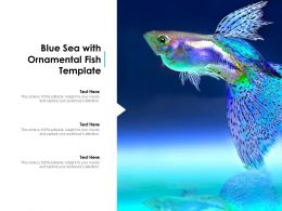 Blue Sea With Ornamental Fish Template