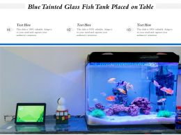 Blue Tainted Glass Fish Tank Placed On Table