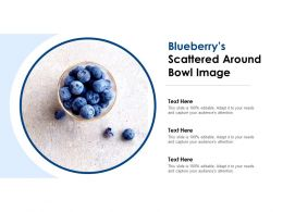 Blueberrys Scattered Around Bowl Image