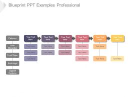 Blueprint Ppt Examples Professional