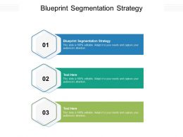 Blueprint Segmentation Strategy Ppt Powerpoint Presentation Inspiration Icon Cpb