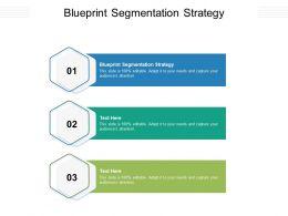 Blueprint Segmentation Strategy Ppt Powerpoint Presentation Inspiration Icon Cpb