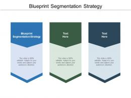 Blueprint Segmentation Strategy Ppt Powerpoint Presentation Model Cpb