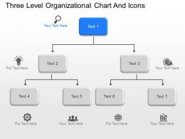 bo Three Level Organizational Chart And Icons Powerpoint Template