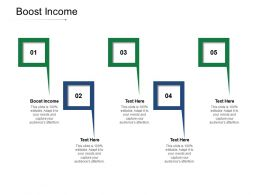 Boost Income Ppt Powerpoint Presentation Pictures Diagrams Cpb