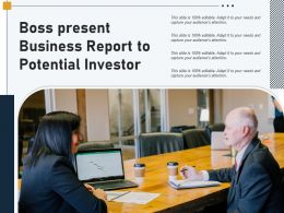 Boss Present Business Report To Potential Investor