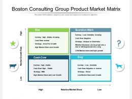 Boston Consulting Group Product Market Matrix