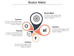 Boston Matrix Ppt Powerpoint Presentation File Format Cpb