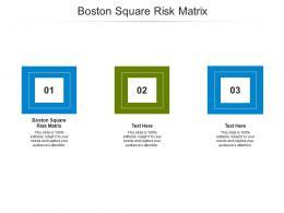Boston Square Risk Matrix Ppt Powerpoint Presentation Graphics Cpb