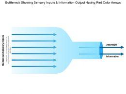 Bottleneck Showing Sensory Inputs And Information Output Having Red Color Arrows