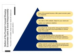 Bottom Of The Pyramid Concept Showing Economies Gains And Social Responsibility