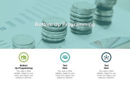 Bottom Up Programming Ppt Powerpoint Presentation Summary Demonstration Cpb