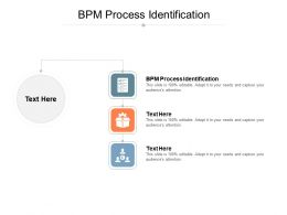 BPM Process Identification Ppt Powerpoint Presentation File Samples Cpb