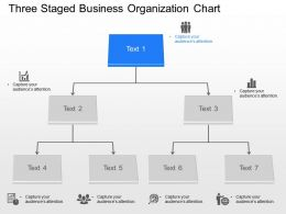 br Three Staged Business Organization Chart Powerpoint Template