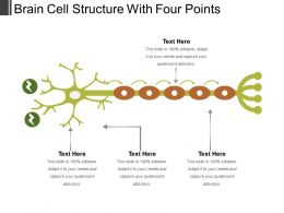 Brain Cell Structure With Four Points