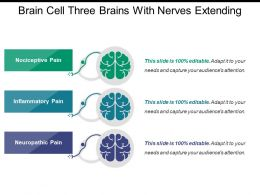 brain_cell_three_brains_with_nerves_extending_Slide01