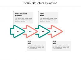Brain Structure Function Ppt Powerpoint Presentation Portfolio Slides Cpb