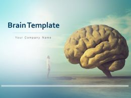 Brain Template Analysis Sequencing Target Implement Analyse Measure Think In Work