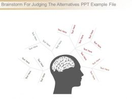 Brainstorm For Judging The Alternatives Ppt Example File