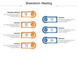 Brainstorm Meeting Ppt Powerpoint Presentation Styles Icons Cpb