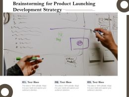 Brainstorming For Product Launching Development Strategy