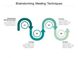 Brainstorming Meeting Techniques Ppt Powerpoint Presentation Icon Ideas Cpb