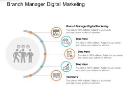 Branch Manager Digital Marketing Ppt Powerpoint Presentation Gallery Templates Cpb