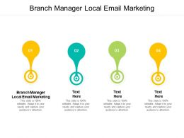 Branch Manager Local Email Marketing Ppt Powerpoint Presentation Icon Deck Cpb