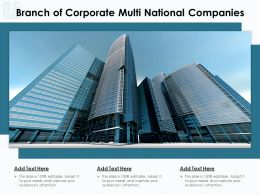 Branch Of Corporate Multi National Companies