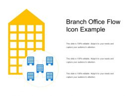 Branch Office Flow Icon Example