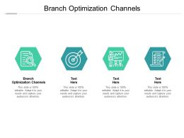 Branch Optimization Channels Ppt Powerpoint Presentation Portfolio Gallery Cpb