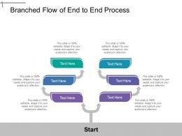 Branched Flow Of End To End Process