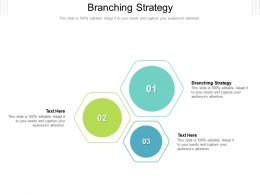 Branching Strategy Ppt Powerpoint Presentation Ideas Example Topics Cpb