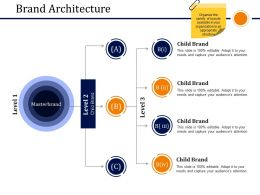 Brand Architecture Sample Ppt Files