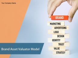 Brand Asset Valuator Model Powerpoint Presentation Slides