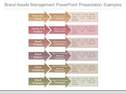 Brand Assets Management Powerpoint Presentation Examples