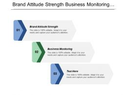 Brand Attitude Strength Business Monitoring Business Insights Business Optimization