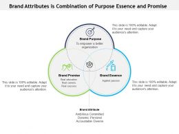 Brand Attributes Is Combination Of Purpose Essence And Promise