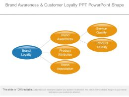 Brand Awareness And Customer Loyalty Ppt Powerpoint Shape