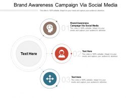 Brand Awareness Campaign Via Social Media Ppt Powerpoint Presentation Cpb