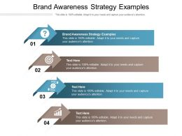 Brand Awareness Strategy Examples Ppt Powerpoint Presentation Professional Cpb